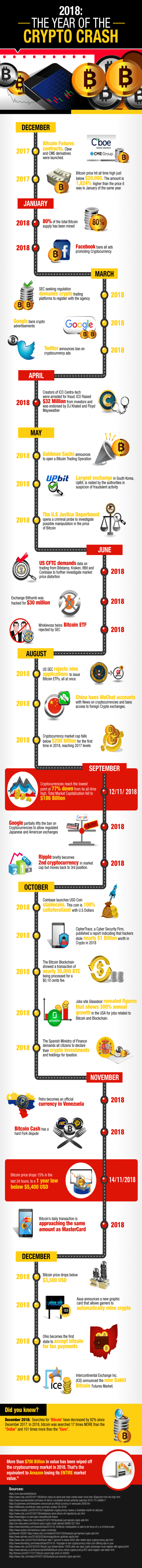 Year of the Crypto Crash infographic